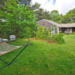 lush grounds great for birdwatching, Cottage Guest, Eastham, MA