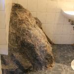 Gigantic bathroom rock....for some reason