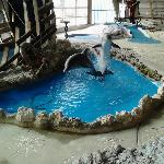 The indoor dolphin fountain