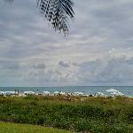 View of the beach from our grand delux oceanfront studio's deck