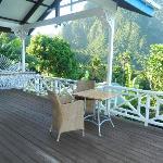 Jacaranda deck