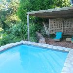 Jacaranda pool
