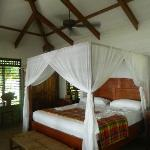 Jacaranda bed room
