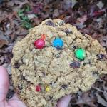 Amicoicious cookie from $6 sack lunch. SO YUM.