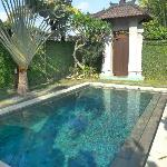 The pool at Corra Villa