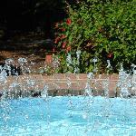 Fountain of sparkles