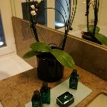 Lovely orchid in bathroom