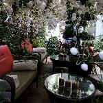 Outdoor courtyard with Xmas 2011 decorations