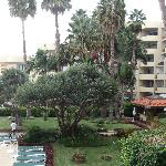 Hotel grounds from our room