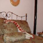 Das Giraffenzimmer
