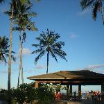 Sol da Bahia mas os coqueirais ajudam muito