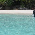 Snorkeling pitstop