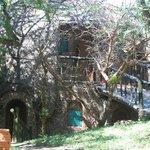 Little Hobbit like rooms on the edge of the Serengeti