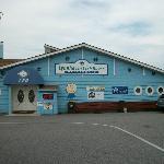 LFH Virginia Beach