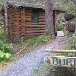 Burl Cabin view from parking which is right out back