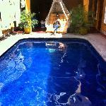 The nice and refreshing pool