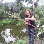Fishing tilapias