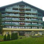 The Alpine Club