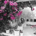 Arka bahçedeki oturma alanı