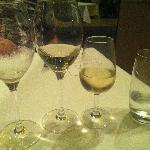 white wines, the best one was from Philip Shaw