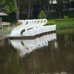 Pedalinhos no Parque das Águas de Caxambú