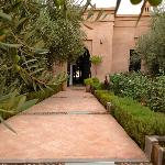 Main entrance under a canopy of olive trees