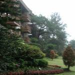 Beautiful garden of the Manor
