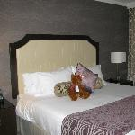 King sized bed and the hotel's cute bear