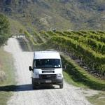 Daily departing, small group wine tours
