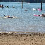 Alder Lake Park