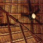 Palapa roof with fan