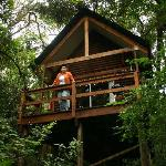 Kurisa Moya's Forest Lodge Cabin is in the tree tops of the indigneous forest with birds and nat
