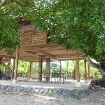 Still the treehouse :)