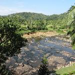 View from my room balcony - this is the river they bring the Pinnawala elephants to bathe in