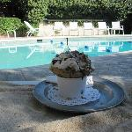 "Pool with a ""small"" ice cream from El Churro"