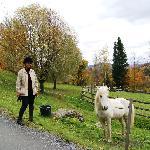 Carolyn with a colt