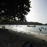 Winnifred Beach