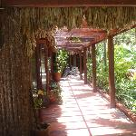 walkway by the restaurant / reception