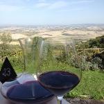 Val d'Orcia,Montalcino,Tuscany
