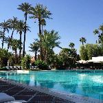 La piscine extérieure de l'hôtel entourée de superbes palmiers