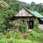 houten cottage