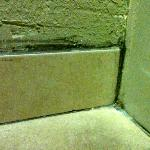 Mold along the baseboard in the bathroom