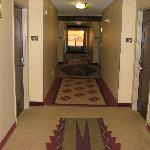 Hallway (nice carpet)