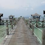 guest jetty