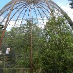 Bird aviary.
