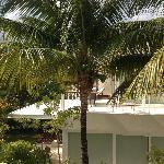 cenote suite