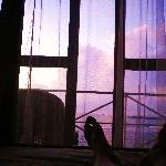 朝起きたら、空がキレイでベットから撮っちゃいました