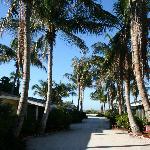 uitzicht vanuit het huisje naar het strand