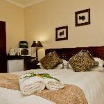 Room 9 ~ Amboseli