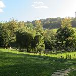 Deer and Bird Park Pinknash